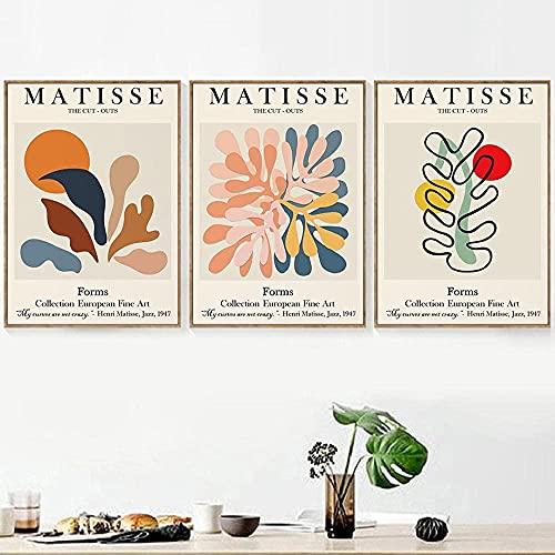A-Generic Abstract Matisse Face Face Hojas Coral Wall Art Table Mesa Minimalista Pintura Cuerpo Pósters y Planta Mirara Planta Mesas para la Sala de Estar Galería Decoración-40x60cmx3 sin Marco